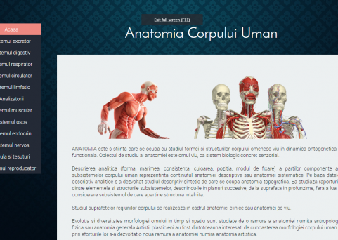 Atestat informatica - Anatomie
