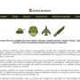 Atestat informatica Armata Armata Romaniei