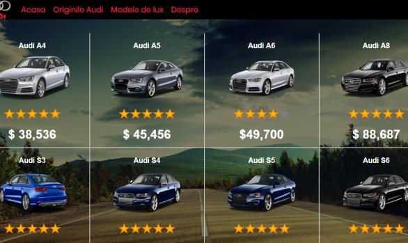 Atestat Audi